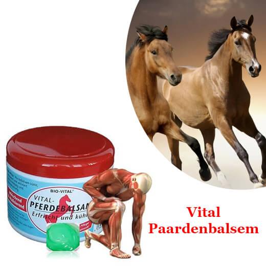 Paardenbalsem koelt, ontspant en bevorderd de bloedsomloop 2 X potten
