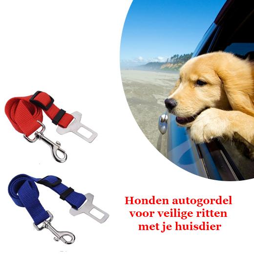 Honden autogordel voor veilige ritten met je huisdier