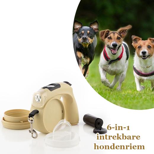 Handige 6-in-1 intrekbare hondenriem
